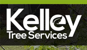 Kelley Tree Removal Tulsa